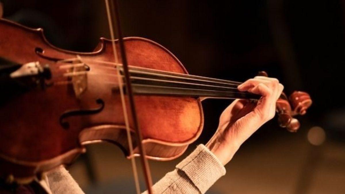https://www.lagastronomiadiavigno.com/wp-content/uploads/2021/08/migliori-corde-per-violino-1200x675-1.jpeg